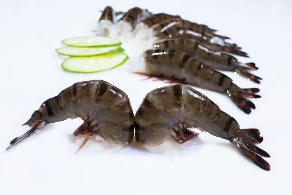 Shrimp58