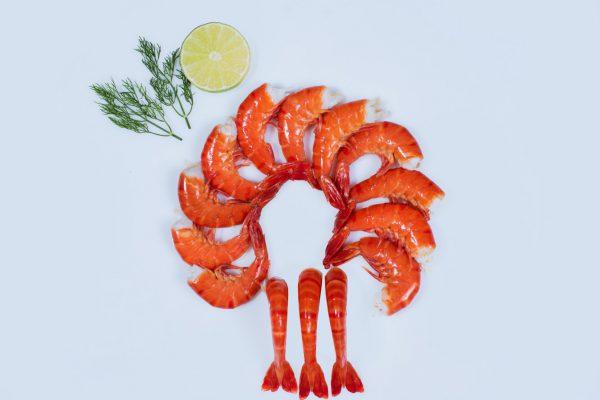 Shrimp60